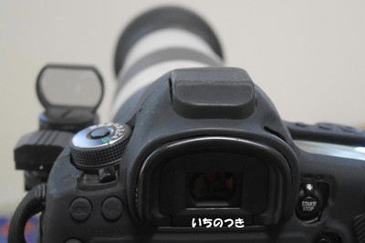 P29503501s